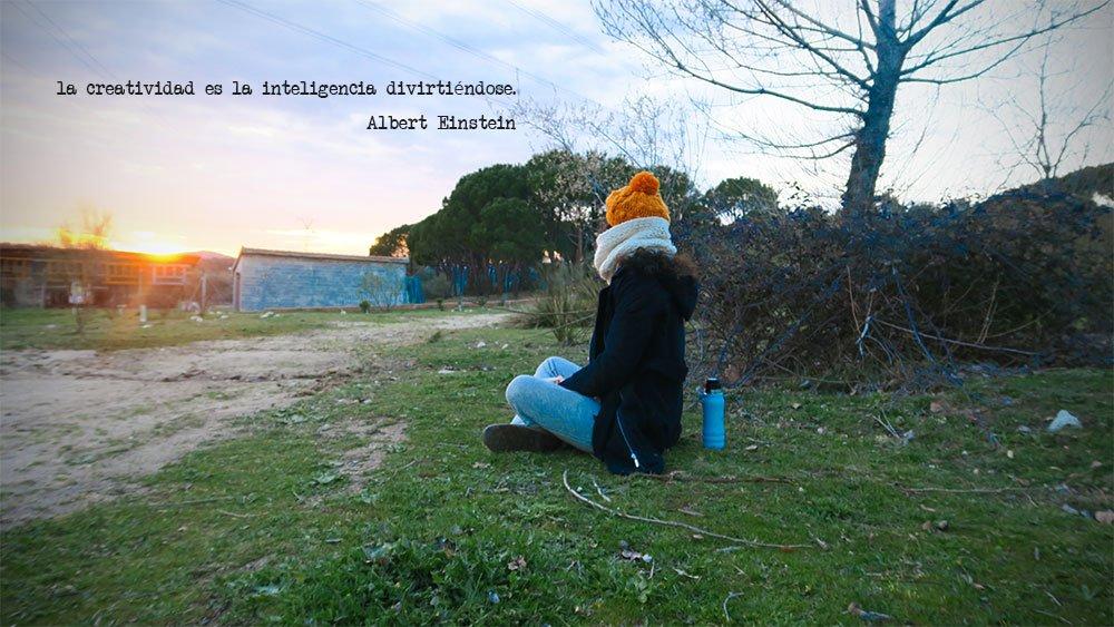 La creatividad es la inteligencia divirtiéndose. Albert Einstein